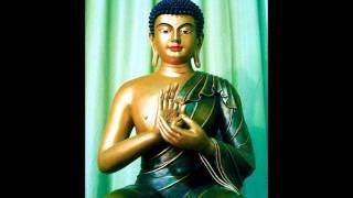 Nam mô Bổn Sư Thích Ca Mâu Ni Phật - Thầy Thích Trí Thoát