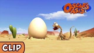 Oscar's Oasis - Ovo Caído do Céu!
