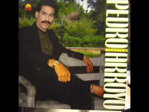 He decidido olvidarte - Pedro  Arroyo