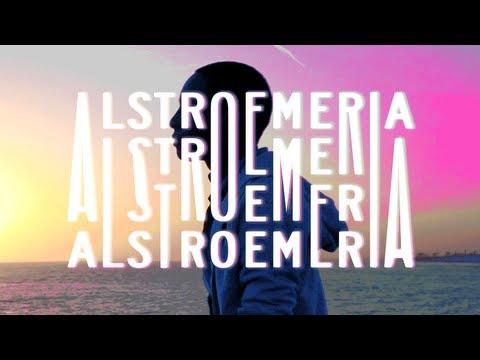 Alstroemeria: A Jubilee Project Fellowship Short Film