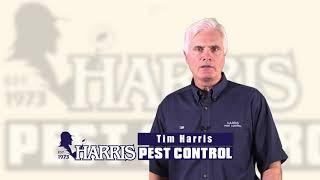 Harris Pest Control, Termite