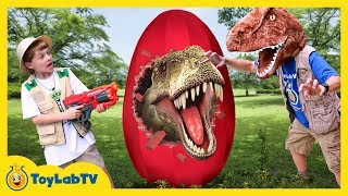 Giant T-Rex Egg! Dinosaur Surprise Toys Opening & Toy Dinosaurs for Children, Family Fun Kids Video