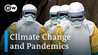 El cambio climático puede aumentar la propagación de enfermedades