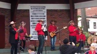 Viva Vallenato Badass Cumbia Band - Songo Sorongo