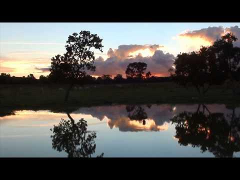 Baixar Sons da natureza, Sons da fazenda, Canto de pássaros, entardecer, 22 min relaxamento,