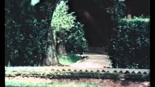 Hồ Chí Minh-Chân dung một con người.