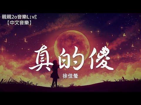徐佳瑩 - 真的傻《一吻定情》追愛版主題曲【動態歌詞Lyrics】