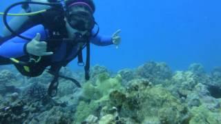 Buceo en hawai