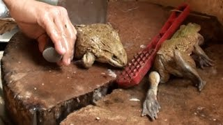 How to cook live frogs-Chinatown Kuala Lumpur-Traditional Chinese Style