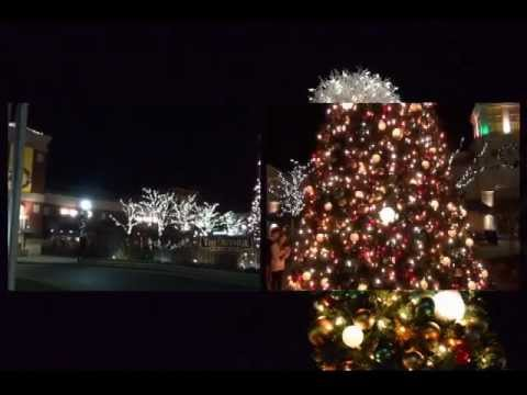 Pictures of Annual Christmas Tree Lights, White Marsh, MD, US