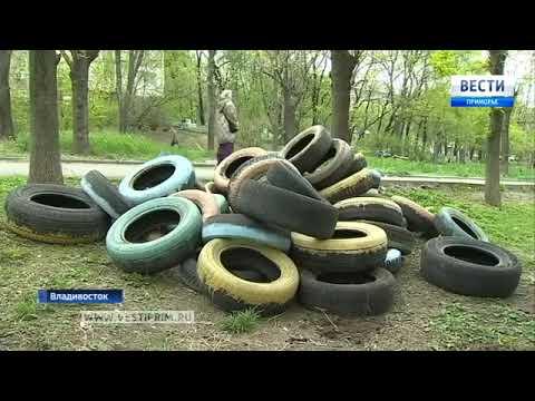Во Владивостоке увеличилось количество несанкционированных свалок
