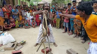 Snake Charming Show In Village | Poisonous Snake Cobra & Rat Snake Played By Snake Charmers