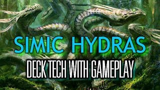 Mtg Deck Tech: Simic Hydras in Core Set 2020 Standard (with Gameplay)