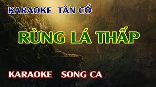 karaoke tân cổ Rừng Lá Thấp |song ca|