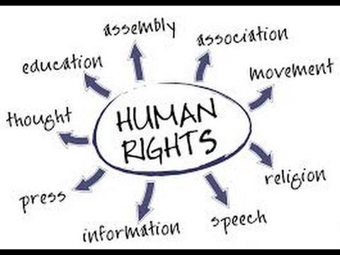 Rights & Privileges - Shane Krauser Speaks!