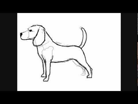 HOW TO DRAW PATRICK STAR (DrawingNow.com) | VideoMoviles.com