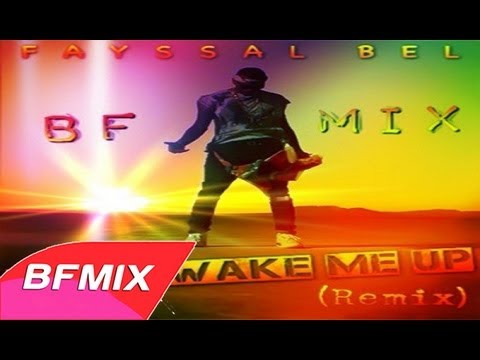 Baixar Chris Brown - Don't Wake Me Up (BFMIX Remix)