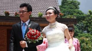 Đám cưới rước dâu bằng 20 con voi