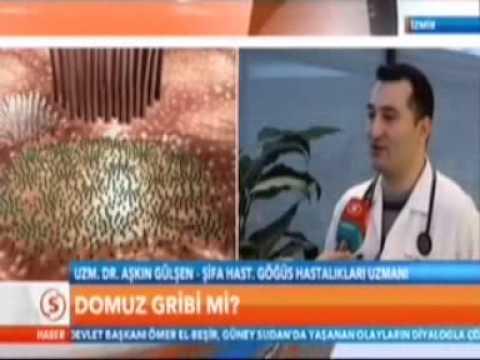 Domuz Gribi ve H3N2