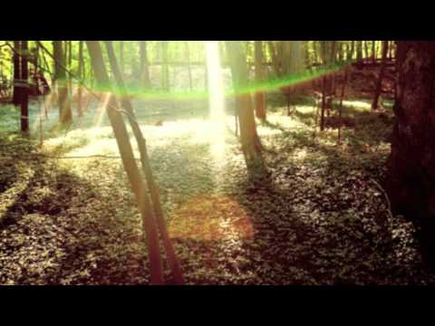 Childish Gambino Camp Bonfire Lyrics - YouTube