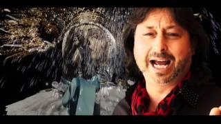 Joaquin Ortega - elche sol y palmeras