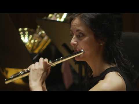 Sinfonía núm. 40 en Sol menor K550 JOVE ORQUESTRA UNIÓ MUSICAL DE BENAGUASIL
