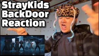 "Stray Kids(스트레이 키즈) ""Back Door"" MV Reaction 뮤비 리액션 / 스트레이키즈, stray kıds, stray kids reaction"