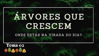 15/03/20 - Árvores que Crescem - Tema 02 - Onde estás na virada do dia? - Rosana Fonseca