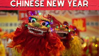 CHINESE NEW YEAR 2019:LION DANCE IN VARIOUS COLORS  KUNG HEI FAT CHOY