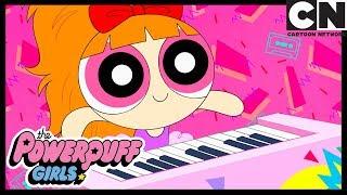Powerpuff Girls | The Powerpuff Girls Are Superstars | Cartoon Network
