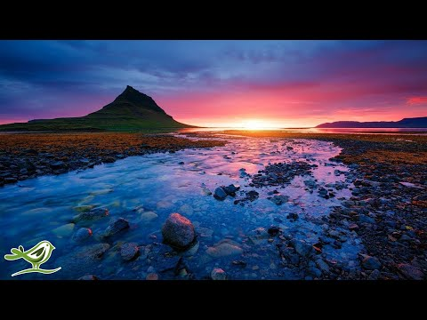Relaxing Music for Stress Relief: Native American Flutes, Violin, Cello, Harp & Piano Music ★142