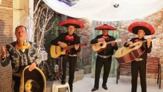 DESPIERTA MARIACHI MEXICOLOMBIA