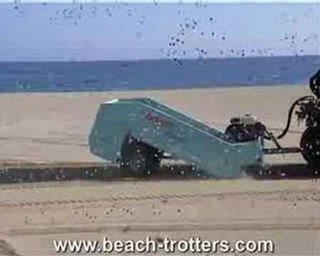 Beach Trotters Resort