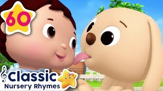 Cute Animals Song! | +More Baby Songs | Baby Learning | Little Baby Bum