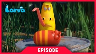 LARVA - FUNNY HIGHLIGHTS | April Fools Day Special | Cartoons For Children | LARVA Official