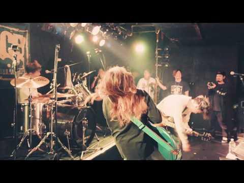 ank せーの LIVE VIDEO