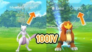 100IV Entei + Mewtwo CP? & Dragonite in the wild [Pokemon Go]