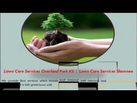Leaf Removal Olathe KS | Austin's Lawn Management