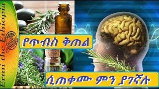 የጥብስ ቅጠል ሲጠቀሙ ምን ያገኛሉ/Rosemary Health Benefits