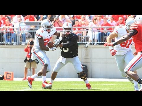Ohio State 2014 Spring Game Highlights
