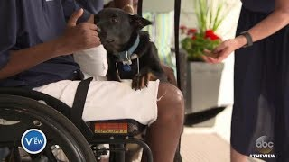Timothy Birckhead Surprised With Emotional Support Dog 'LeBron'   The View