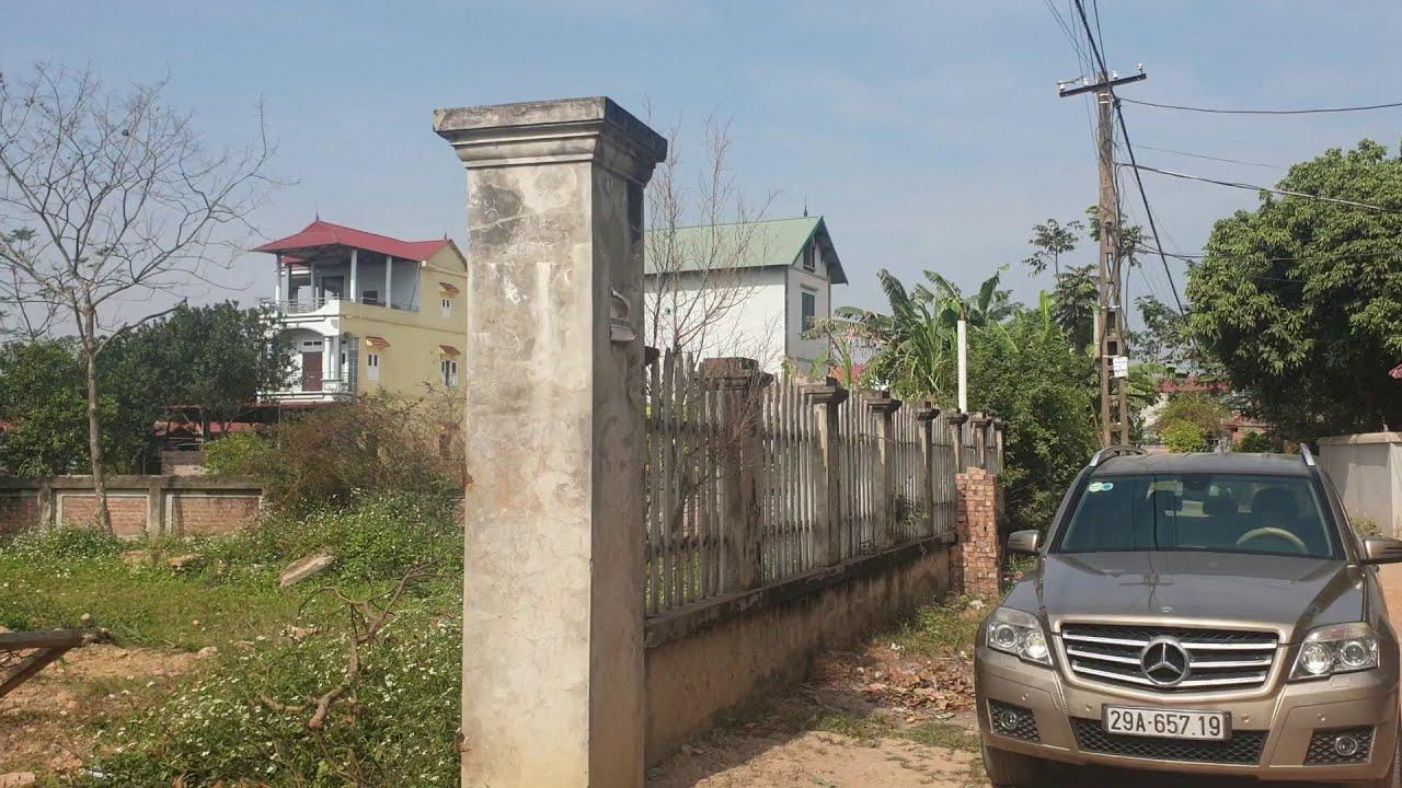 Chính chủ bán, có video: 630m2 nhà cấp 4 tại Thái Lai, Minh Trí, sóc sơn chỉ 2.5tr/m2 video