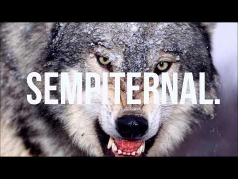 Baixar David Guetta feat SIA - She Wolf (DJ Toussels Remix) FREE