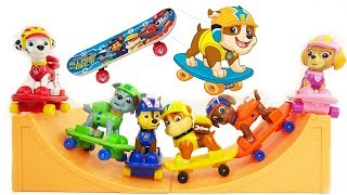 Best Learning Videos for Kids Paw Patrol Toys Teach Toddlers