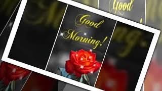 💕Good morning and love song ❤💗💟💖whatsapp status