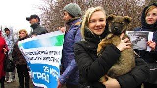 Волгоград: против жестокого обращения с животными