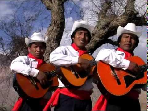 Trío Los Trigales - Mi doctor