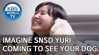 Imagine SNSD Yuri coming to see your dog [Dogs are incredible/ENG,CHN/2020.04.29]