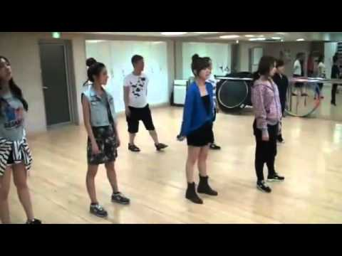 T-ARA (티아라) - 롤리폴리 (Roly-Poly) [Dance Practice].flv