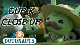 Octonauts -  Gup K Close Up